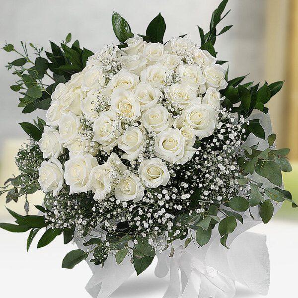 Kırıkkale 41 Beyaz Gül