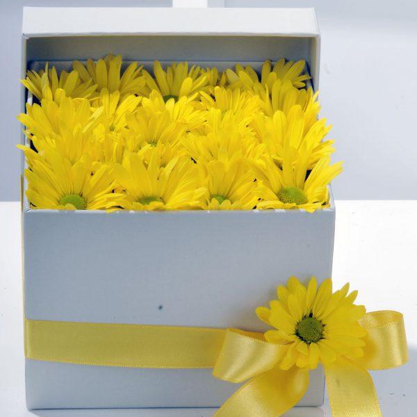 Kırıkkale Bahar Özlemi Kır Çiçeği