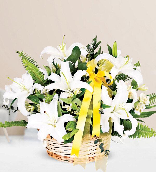 Kırıkkale Beyaz Kazablanka Lilyum Sepeti