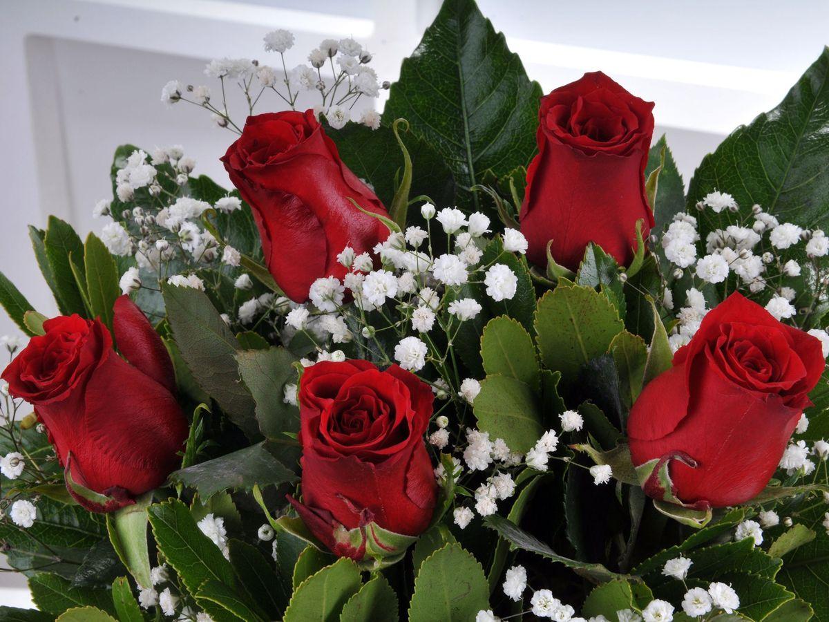 Kırıkkale Gün Batımı 5 Kırmızı Gül Çiçek Aranjmanı