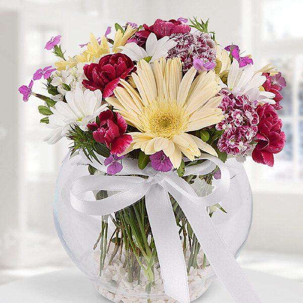Kırıkkale Karışık Kır Çiçekler