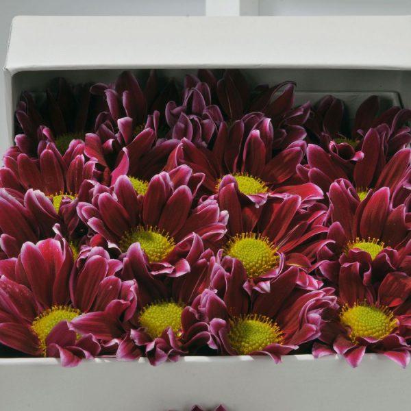 Kırıkkale Geçmişten Bir Bahar Kır Çiçeği Aranjmanı