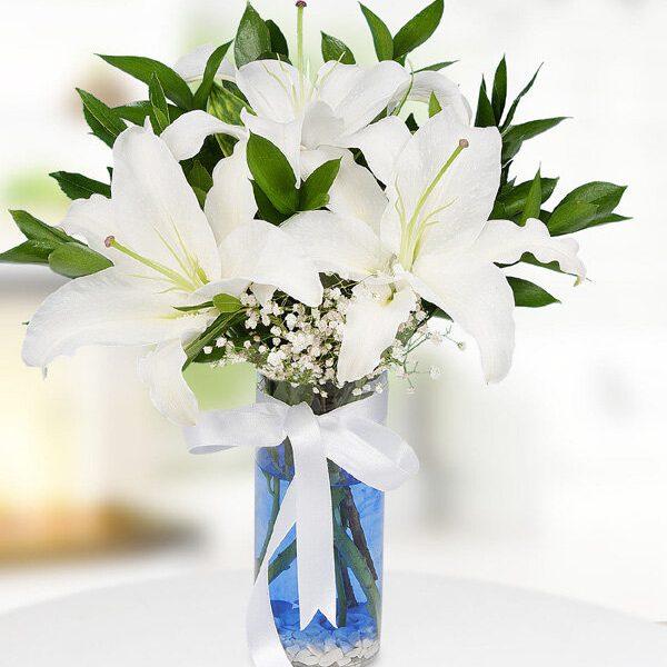 Kırıkkale Vazoda Beyaz Kazablanka Lilyum